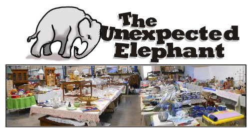 The Unexpected Elephant fundraiser